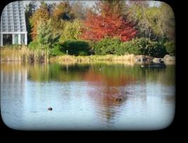秋の富山県中央植物園