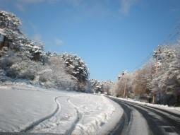 雪景色 道路 轍